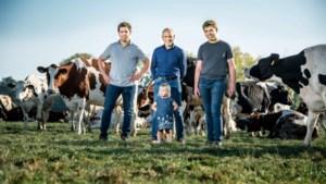 Plannen voor modern melkveebedrijf met 860 runderen:
