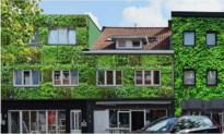Stalenstraat moet 'langste groene gevel van Vlaanderen' worden
