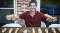 Voorgebakken witte stokbroodjes: op zoek naar zacht kruim en krokant korstje