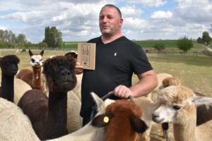 Gingelomse alpacaboer bekroond met Handmade in Belgium-label