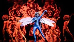 Welke andere BV's zitten in 'The masked singer'? Alle theorieën op een rij
