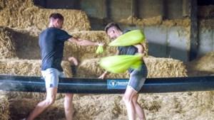 Afvallingsrace in 'Boer zkt vrouw': vechten om een plek op de boerderij (en in het hart) van Tristan