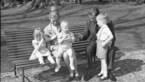 """Peter Adriaenssens noemt opvoeding van Albert en Paola """"kindermishandeling"""""""