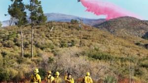 Branden treffen wijngebied Napa Valley in Californië