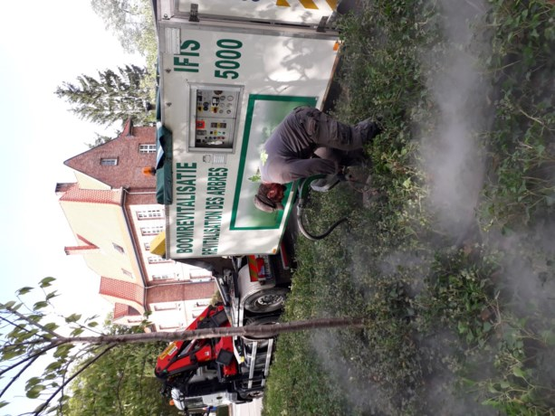 Grondverbeteringswerken laten bomen groeien