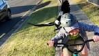 Hilarisch: Jongetje wordt belaagd en achterna gezeten door een woeste ekster