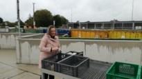 Perenaren kunnen na één jaar opnieuw naar hun eigen vernieuwde recyclagepark <BR />