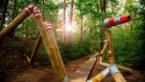 Onze beste uittips voor jong en oud: wandel de nieuwe Stokkenmanroute in Genk