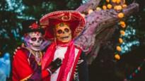 Pretparken al (dan niet) in het getouw voor Halloween