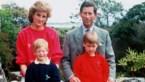 Merk brengt iconische truien van prinses Diana weer op de markt