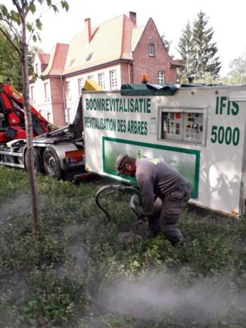 Grondverbeteringswerken om bomen te laten groeien