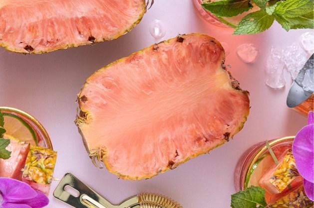 Na meer dan vijftien jaar onderzoek komt eerste roze ananas op de markt