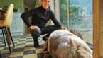 Ilya (23) redt 120 kilo zwaar hangbuikzwijn Maybellie van verdrinking