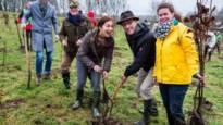 Zuhal Demir wil een bronsgroen pact met de Limburgse burgemeesters