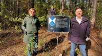 """Groen vraagt bescherming waardevol bos in Kaulille: """"Aan beschermd erfgoed raak je niet"""""""