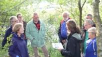 Limburgse bossen verdwijnen, en de andere provincies krijgen compensatie