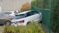 Auto vliegt door omheining op parking bij garagist in Hasselt