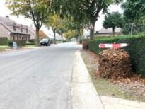 Gemeente Riemst gaat voor een propere herfst en plaatst 350 bladkorven