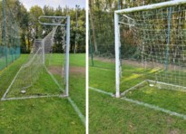 Zeven voetbalnetten van Torpedo Hasselt vernield