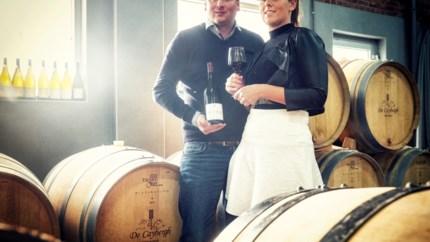 <B>Wijnen in Herk-De-Stad: waarom dit wijndomein een buitenbeentje is</B>