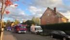 Keukenbrand zorgt voor rookontwikkeling in tweewoonst in Beringen