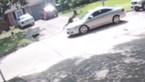 Onfortuinlijke man vlucht voor uitgebroken hond en wordt frontaal aangereden door auto