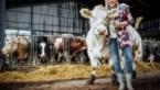 Botst Europees landbouwbeleid met Green Deal?