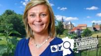Burgerparticipatie in Wellen: 4,99/10