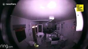 Heftig: man ontdekt inbreker in zijn huis en die zal zich dat nog lang herinneren