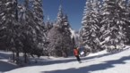 Bijna niemand boekt nog skireizen nadat virologen het hebben afgeraden