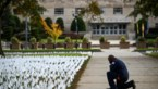 Pakkend: Amerikaanse kunstenares plant vlagje voor elke coronadode