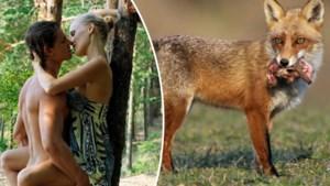Sinds lockdown ziet jager meer vrijende koppeltjes dan wild voor zijn camera opduiken