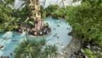 Kun je nog zwemmen of bowlen in vakantieparken? En is dat wel verstandig?