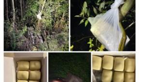 Jager krijgt pralines van vrijend koppel dat door wildcamera's gefilmd werd