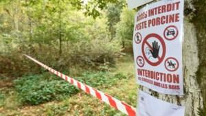 België vraagt status van land vrij van Afrikaanse varkenspest terug