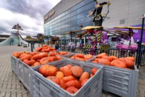Plopsa Indoor Hasselt schenkt 450 pompoenen aan Depot Margo