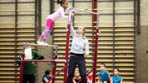 Ministerieel besluit verbiedt ook indoor sport voor min 12-jarigen: Weyts niet blij