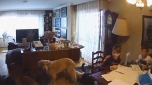 Aardbeving schudt appartement van gezin in Izmir volledig door elkaar