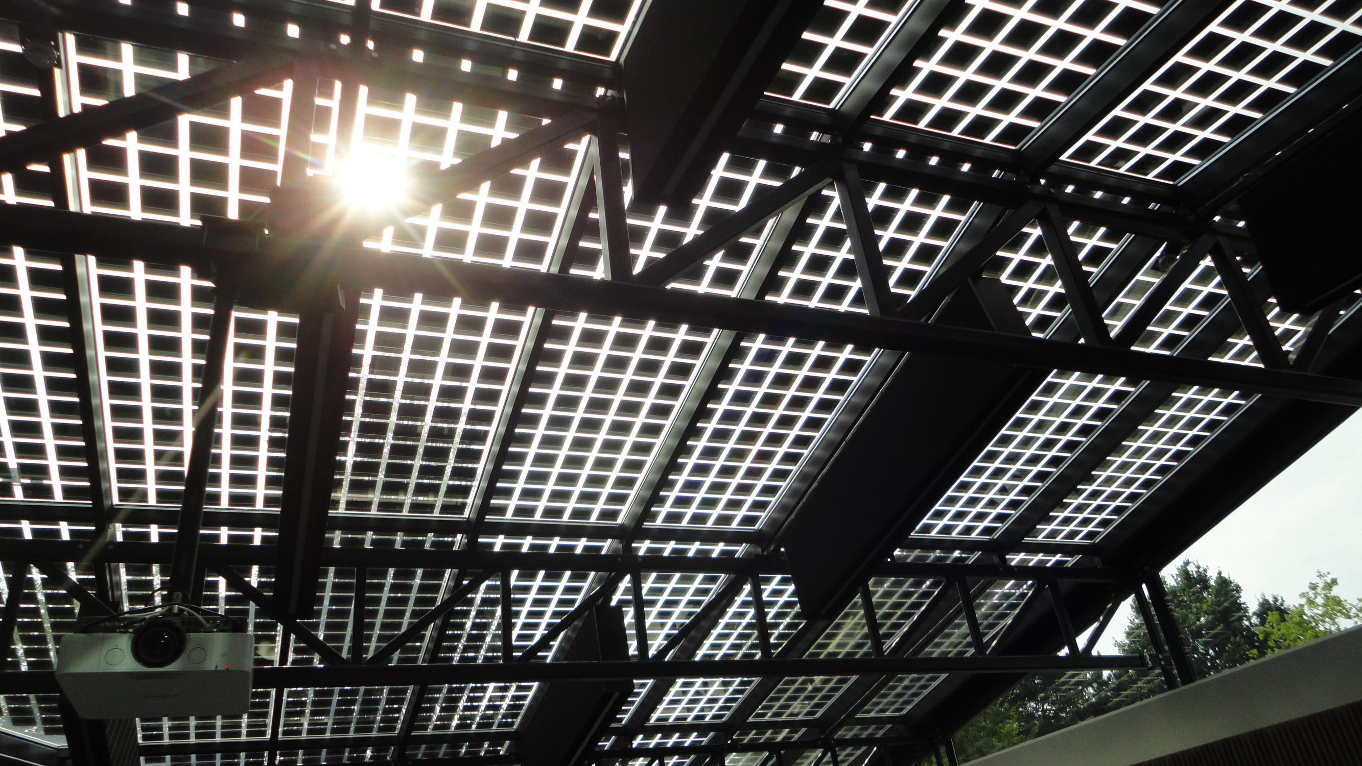 Van de Kreeke en Co halen pionier in zonnepanelen naar Genk