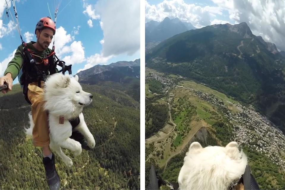 Paraglider laat zijn hond uit boven de Franse Alpen