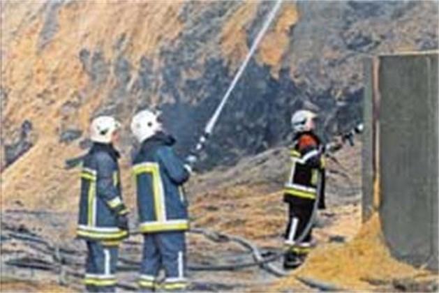 Brand bij Houtworm in Bree onder controle