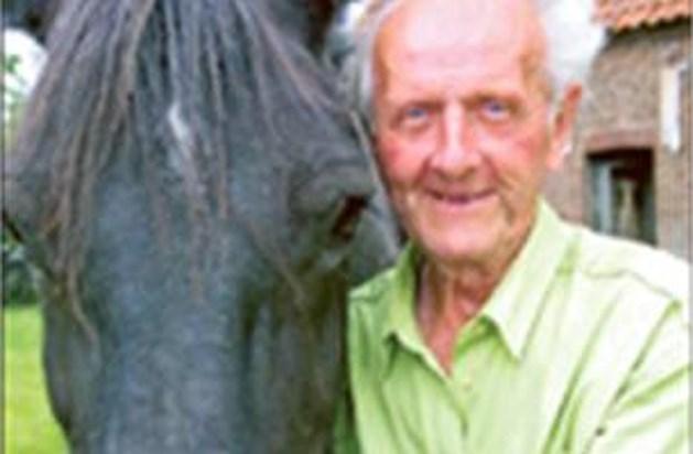 Verwaarloosde paarden weggehaald bij Boer Charel