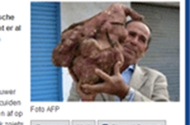 Boer uit Libanon stoot op aardappel van 11,3 kilogram