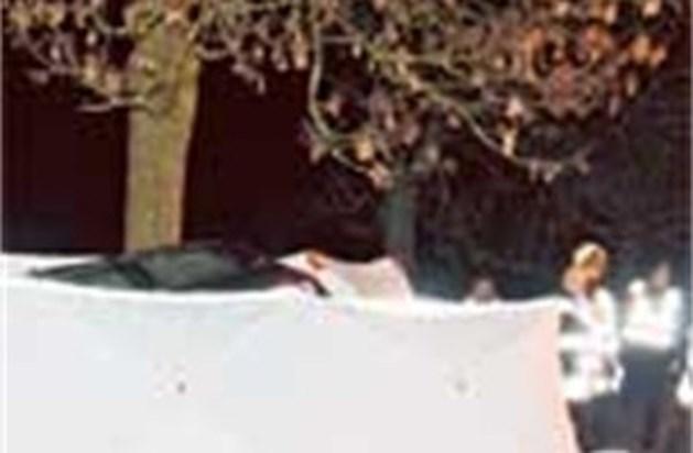 Twee broers sterven in auto in Tongeren