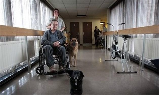Rusthuis Zonnestraal zet honden in