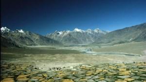 Meer dan 350 nieuwe  soorten ontdekt in de Himalaya
