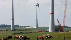 Minister Bourgeois verbiedt belasting op windmolens