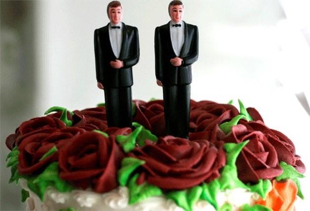 Aantal homohuwelijken sterk toegenomen