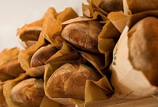 Mens at 30.000 jaar geleden al brood