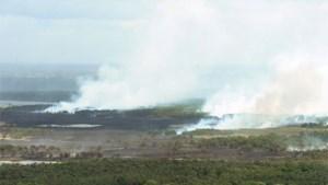 Al 600 hectare afgebrand in Kalmthoutse Heide